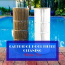 How to Clean a Pool Cartridge Filter System
