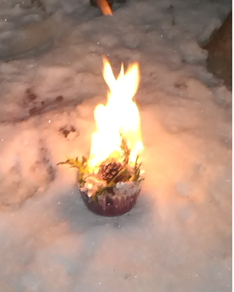 Picture of Christmas Fire Starter