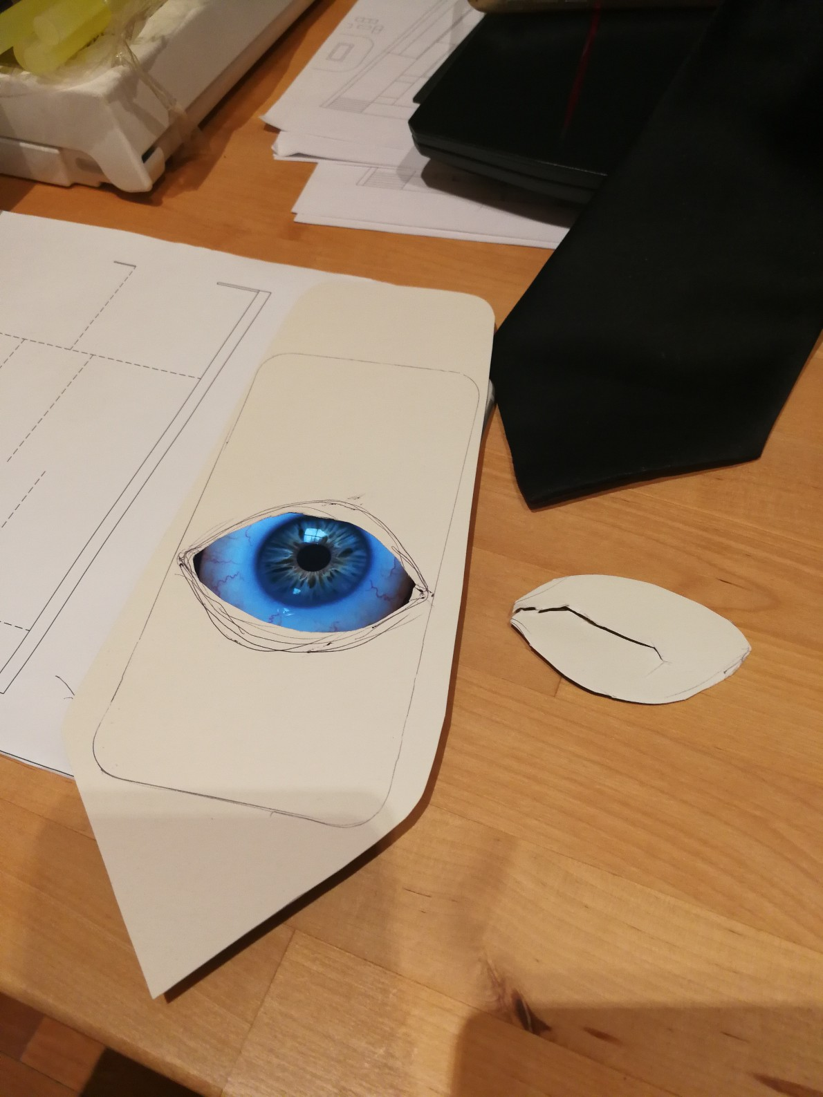Picture of Video Eyeball