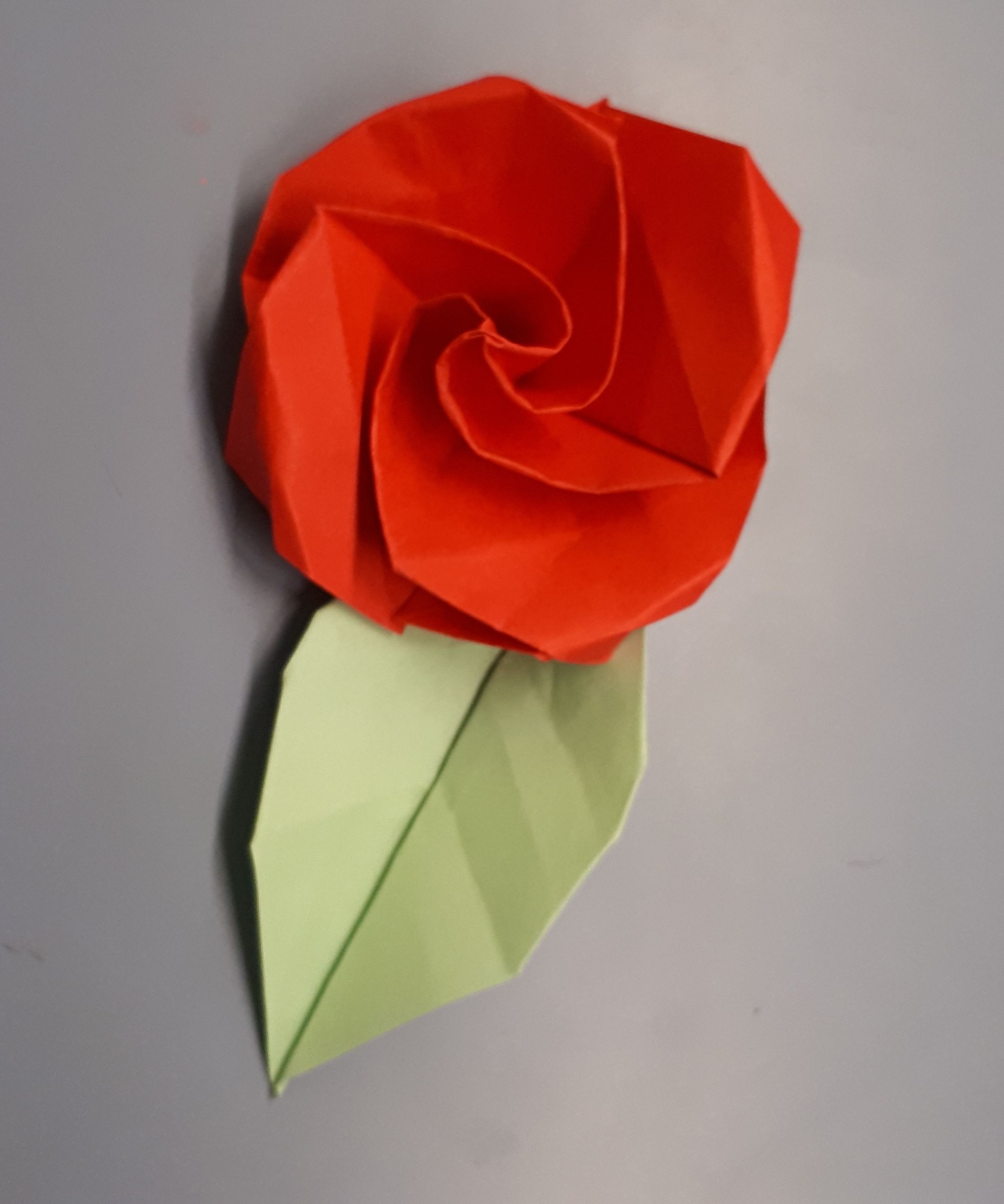 Make an Easy Origami Lily Flower | 2592x2161