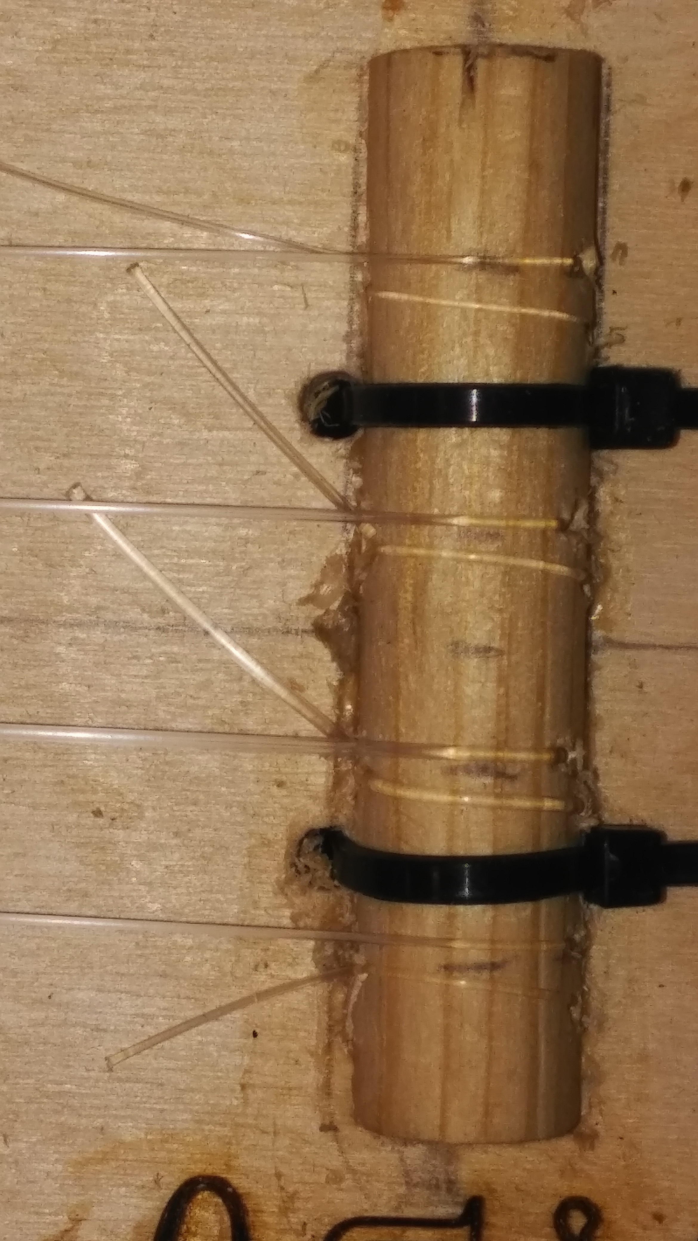 Picture of Add Bridge, Nut, and Tuning Pegs