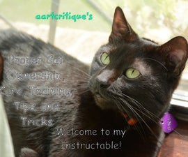 Proper Cat Ownership, Care, Training, Tips, and Tricks
