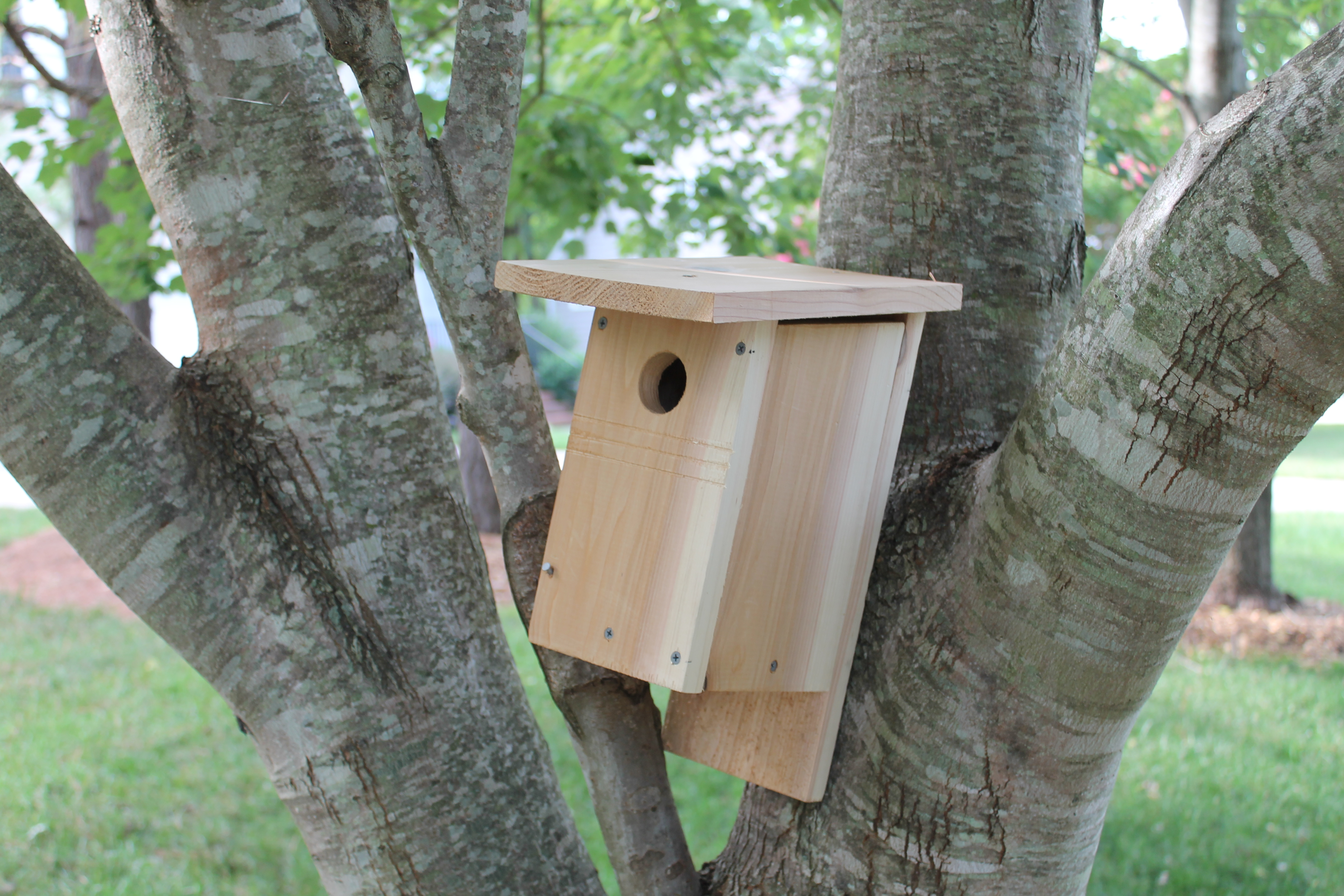 Picture of How to Build a NABS Birdhouse