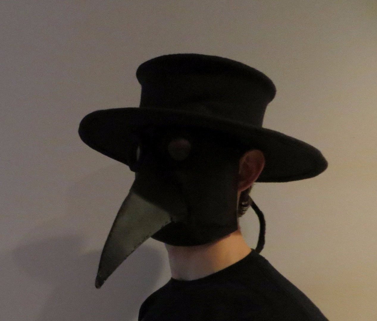 Picture of Plague Doctor's Hat