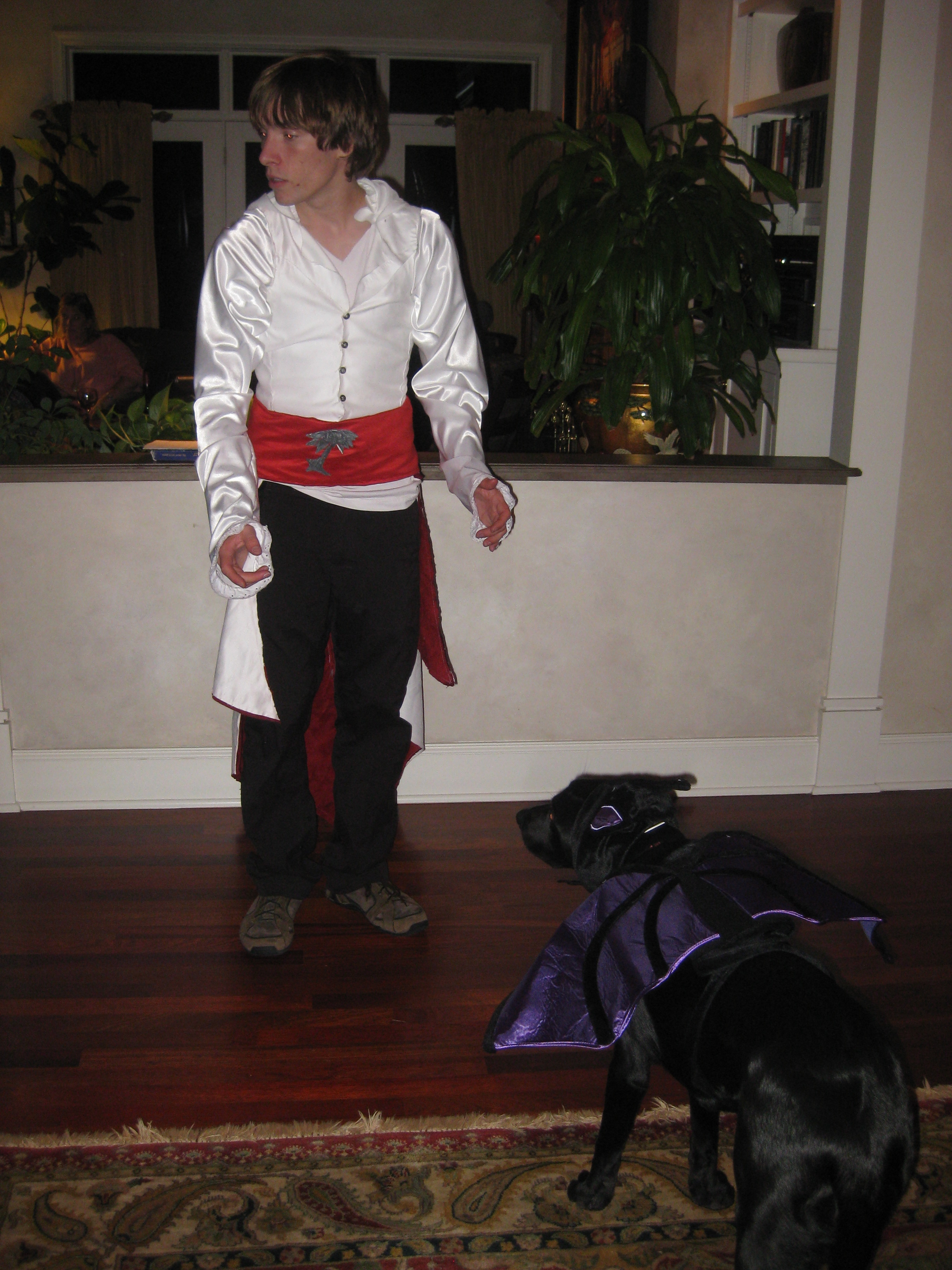 Picture of Ezio Costume