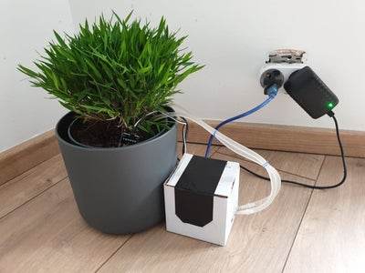 Install the System in Plant Pot