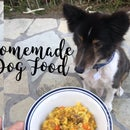 Homemade Nutritious Dog Food on a Budget