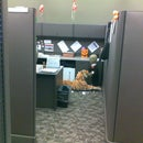 'Cubicle Tiger' Conspires with 'Creepy Guy'