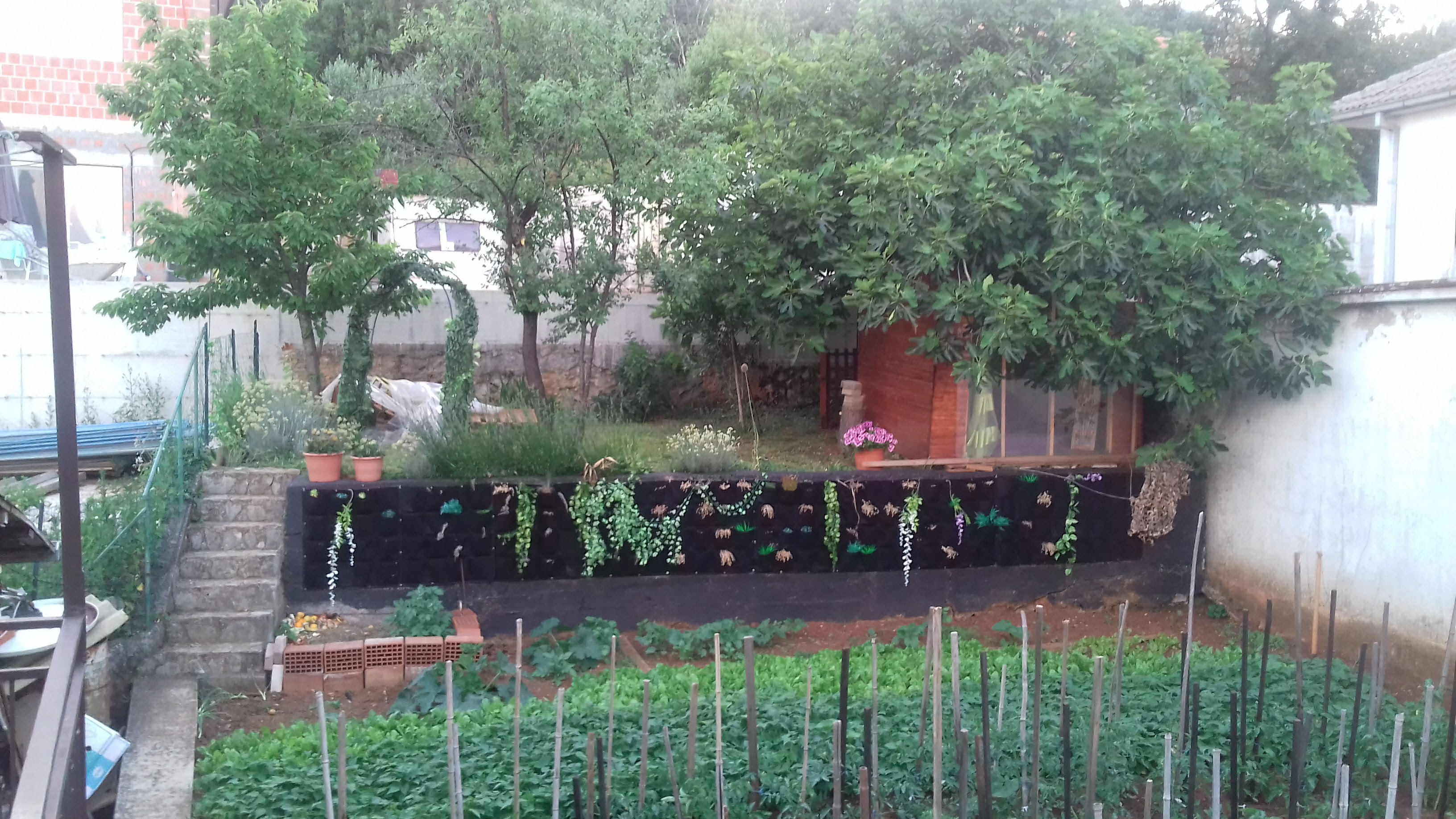 Picture of Garden and Final Result