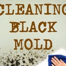 Cleaning Bathroom Mold(black Mold)
