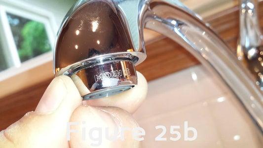 Flush the Faucet