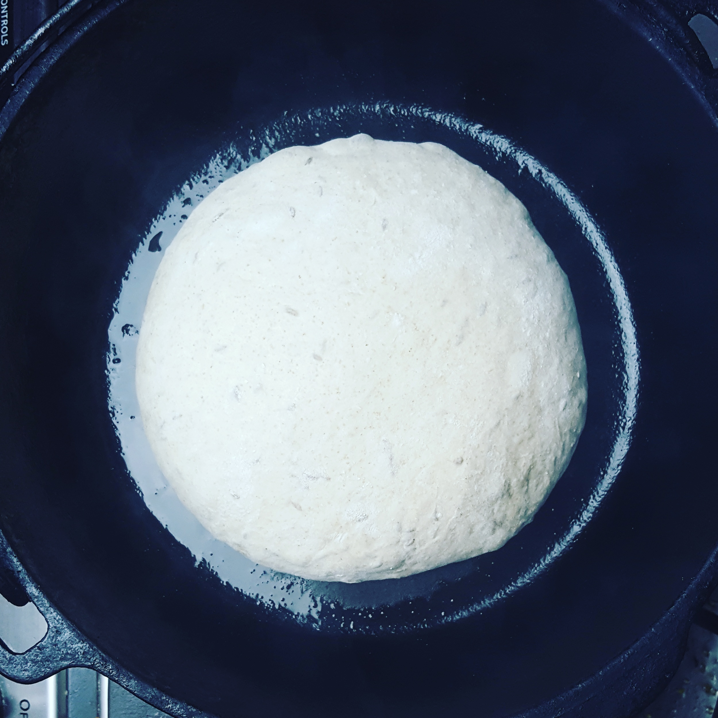 Picture of Place Dough in Dutch Oven