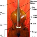 How to Get Good on Double Bass
