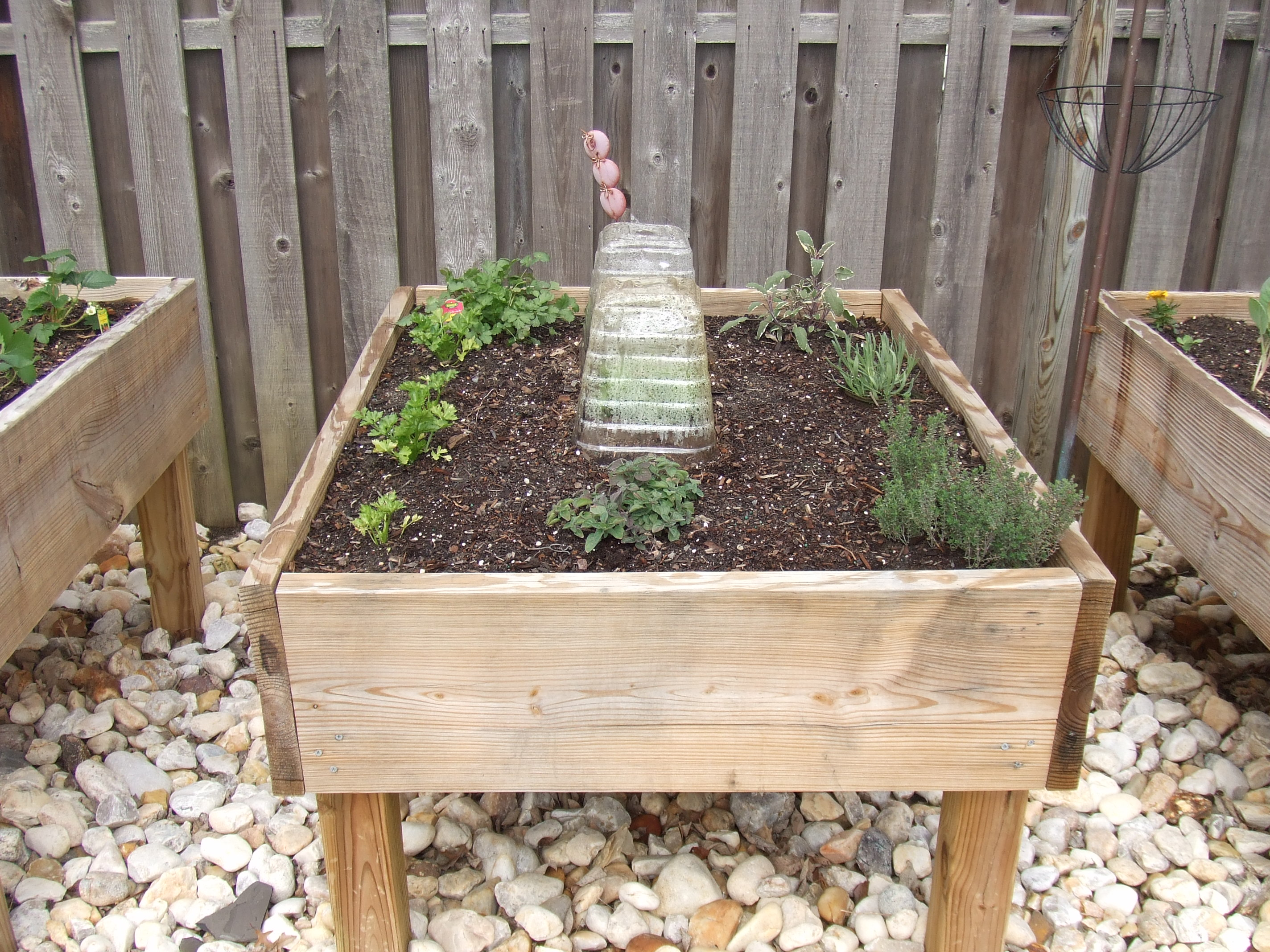 Picture of Raised Garden Bed - on Legs!