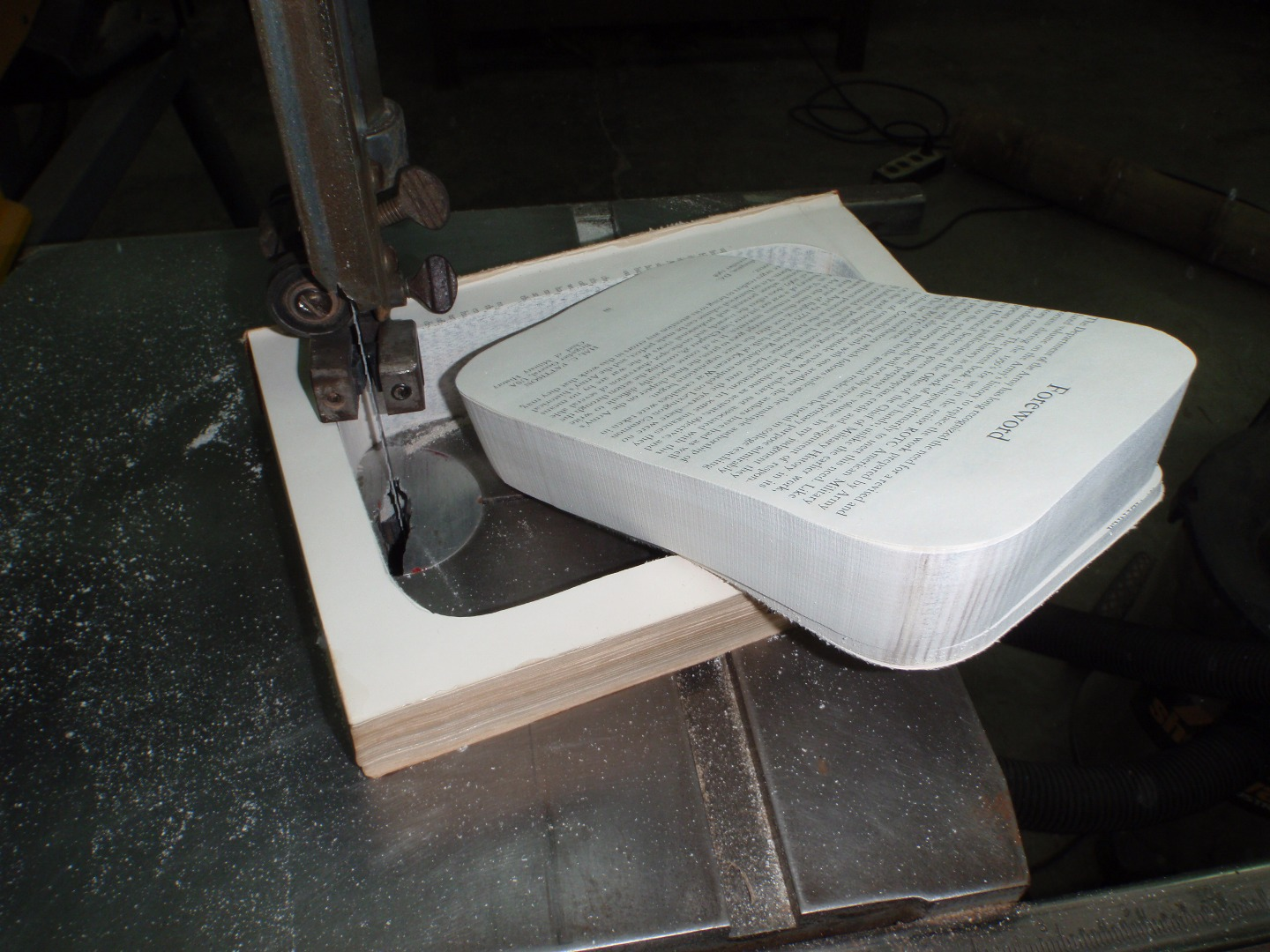 Picture of Cutting Out the Book Bank.