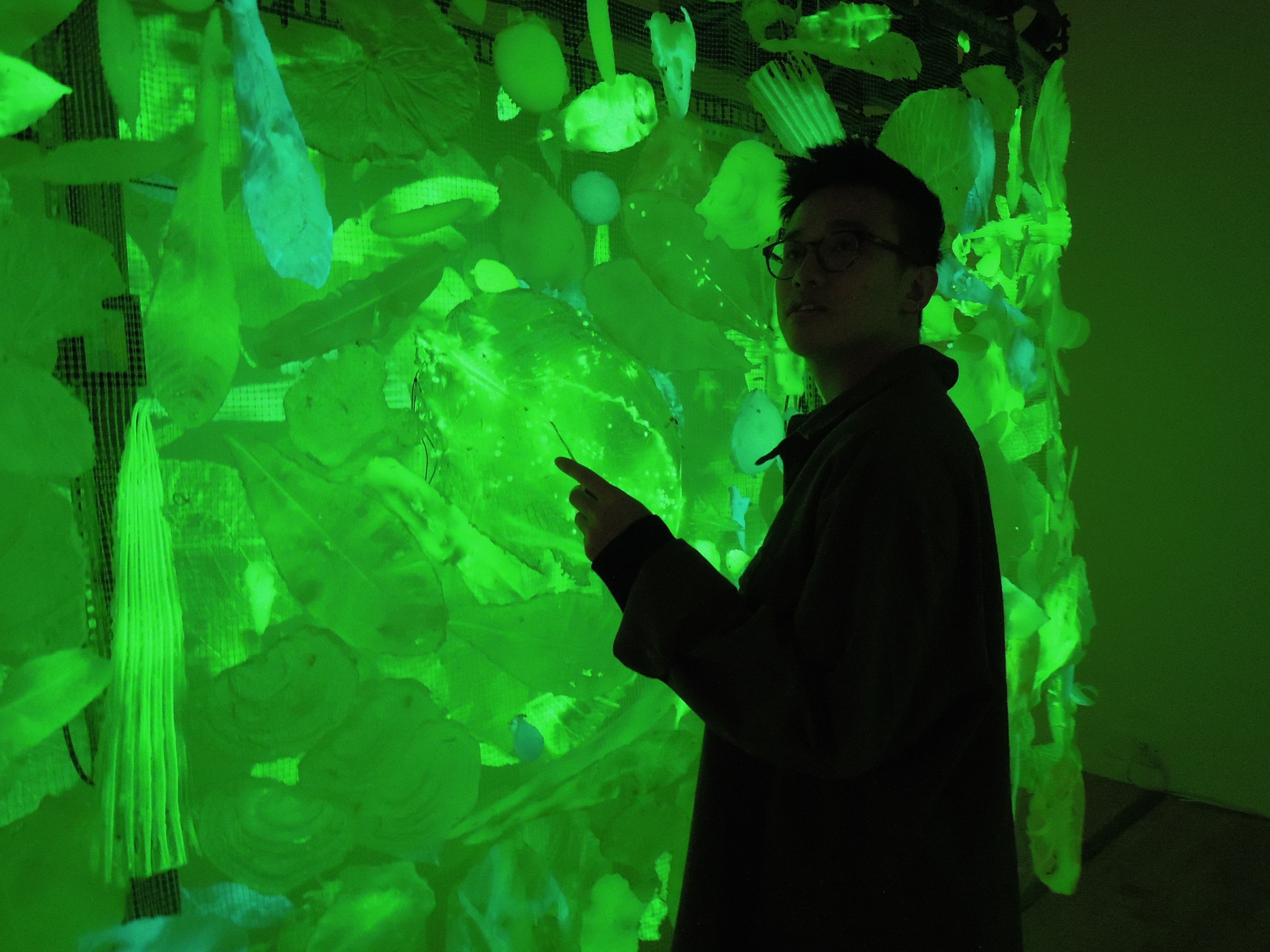 Picture of Glowing Leaves: Rapid Moldmaking in Nature