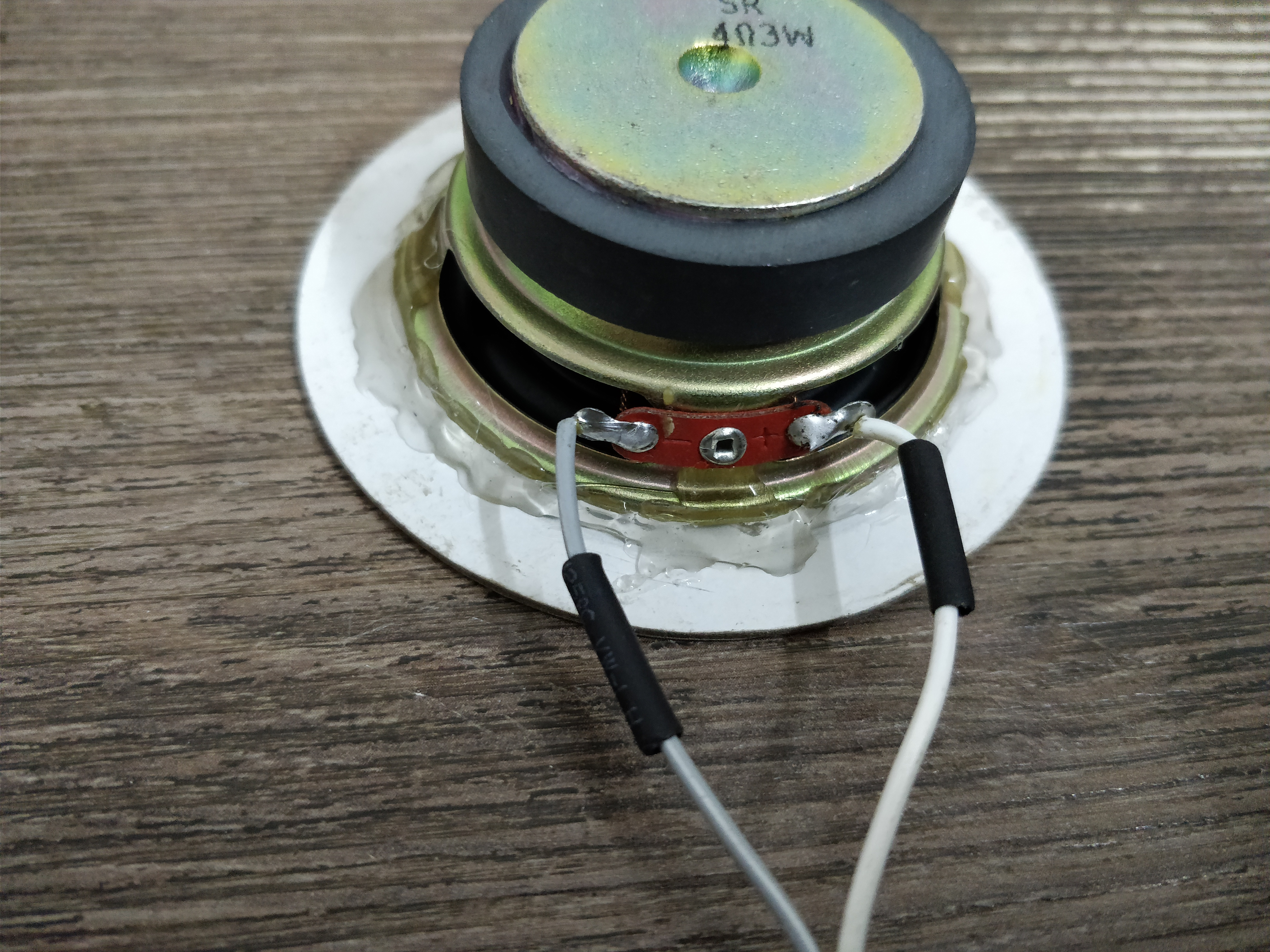 Picture of Amplifier and Mounting Speaker Driver