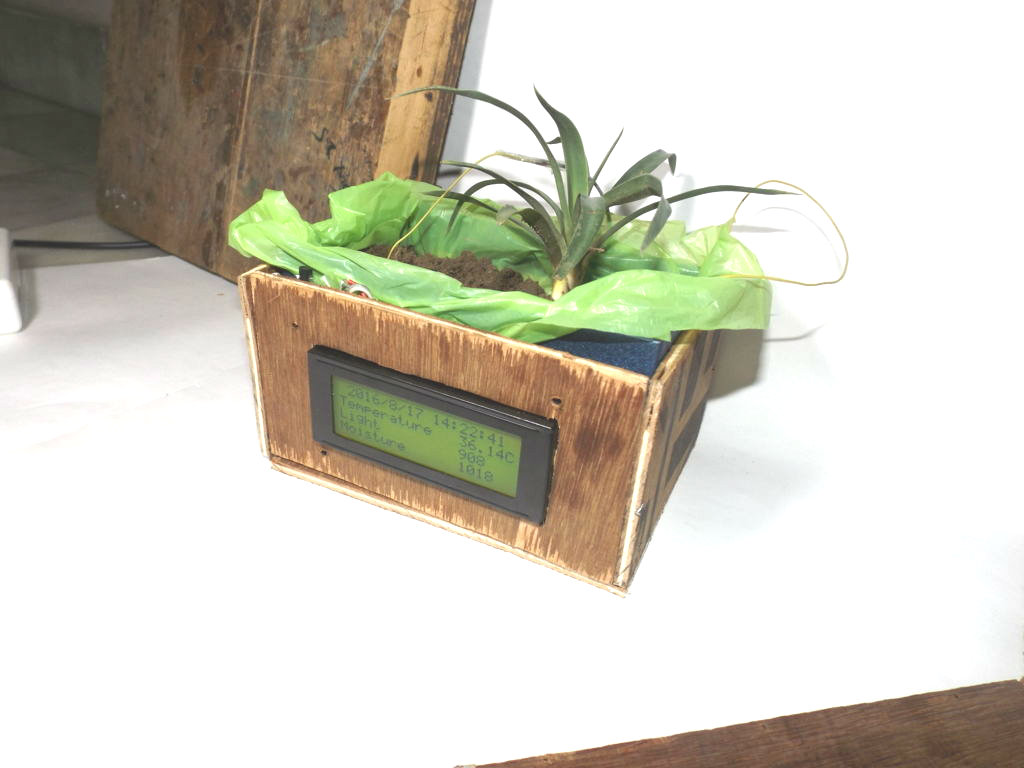 Picture of Plant Box