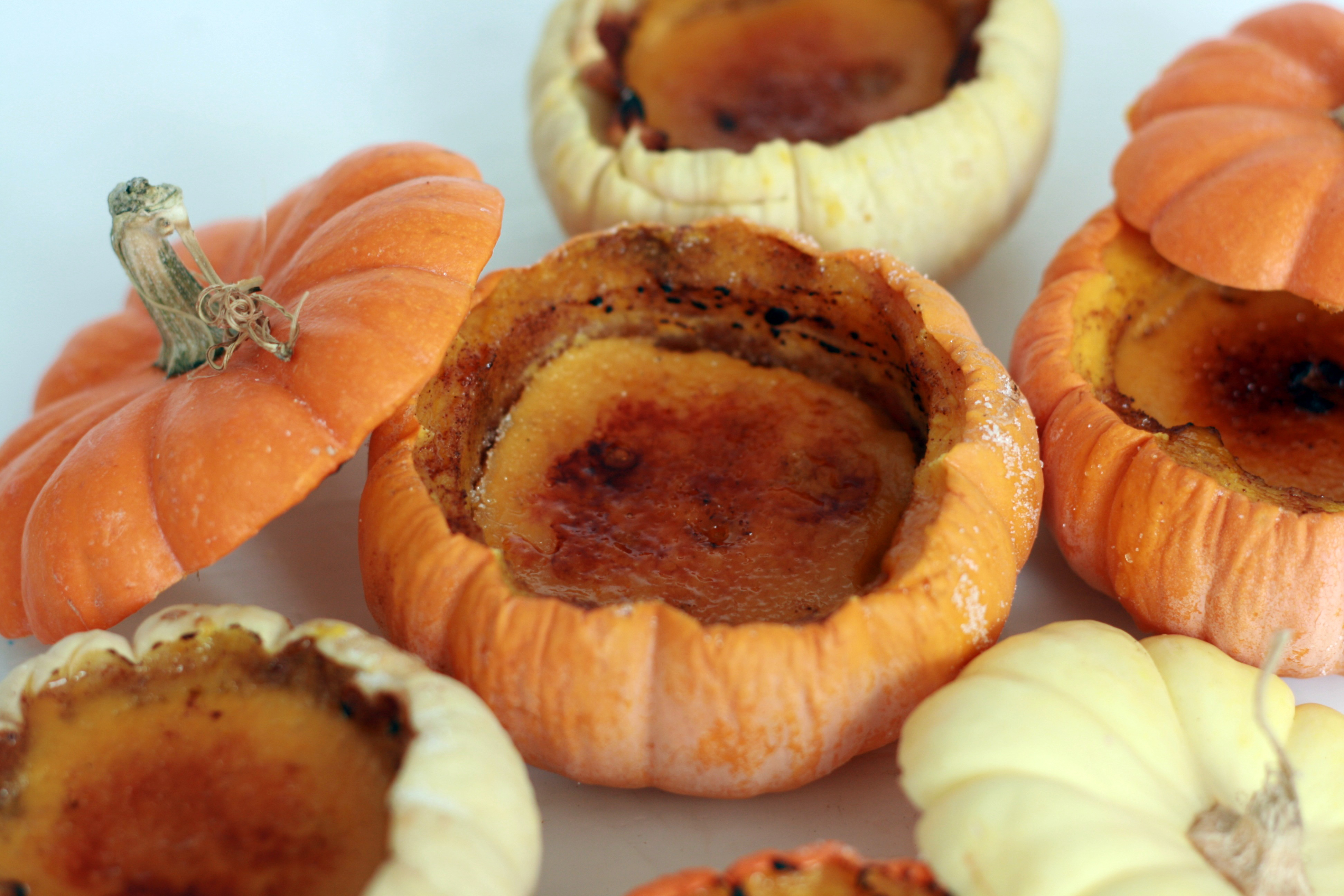 Picture of Pumpkin Creme Brulee