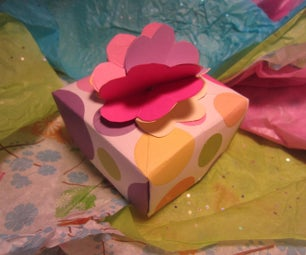 Cute Little Gift Box