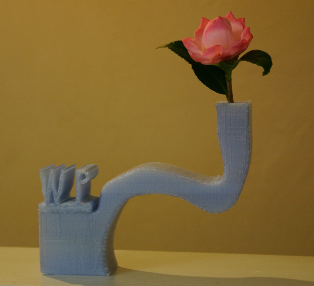 Picture of Custom Crooked Vase