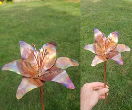 Rainbow Copper Flower