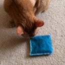 Catnip Pillow Toy