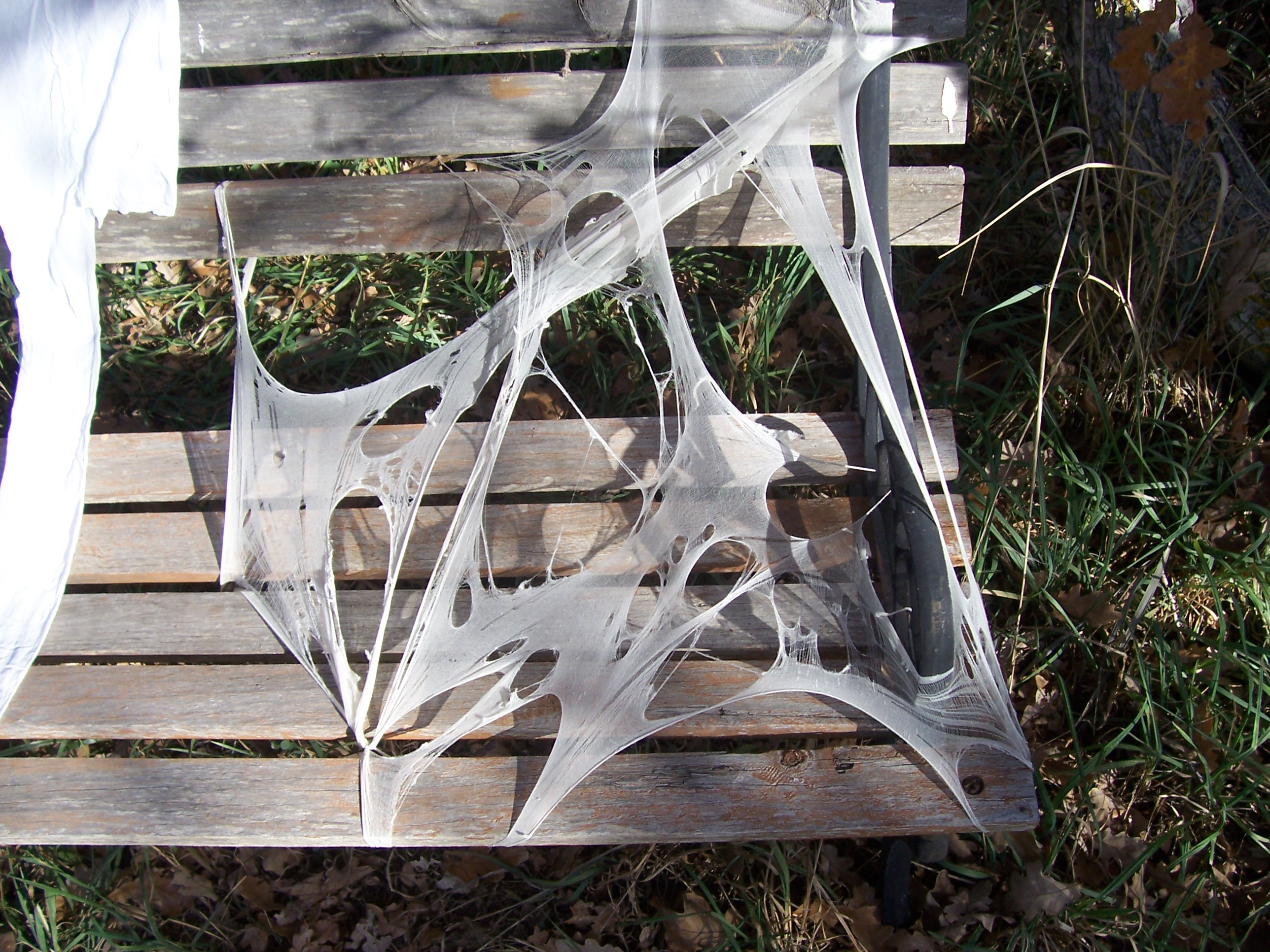 Picture of Reusable Spider Webbing
