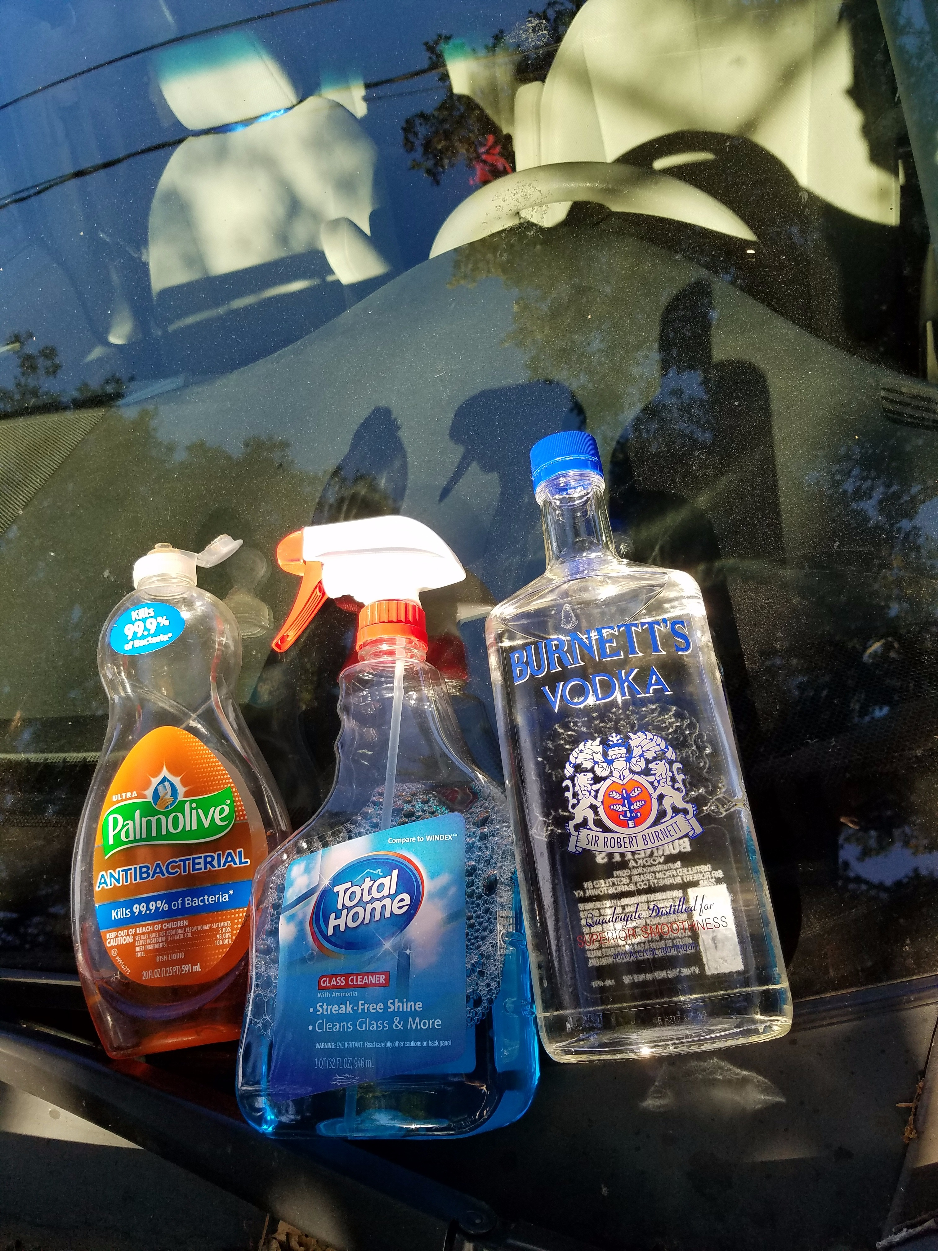 Picture of Three Easy Steps: Soap+water; Windex; Then Vodka