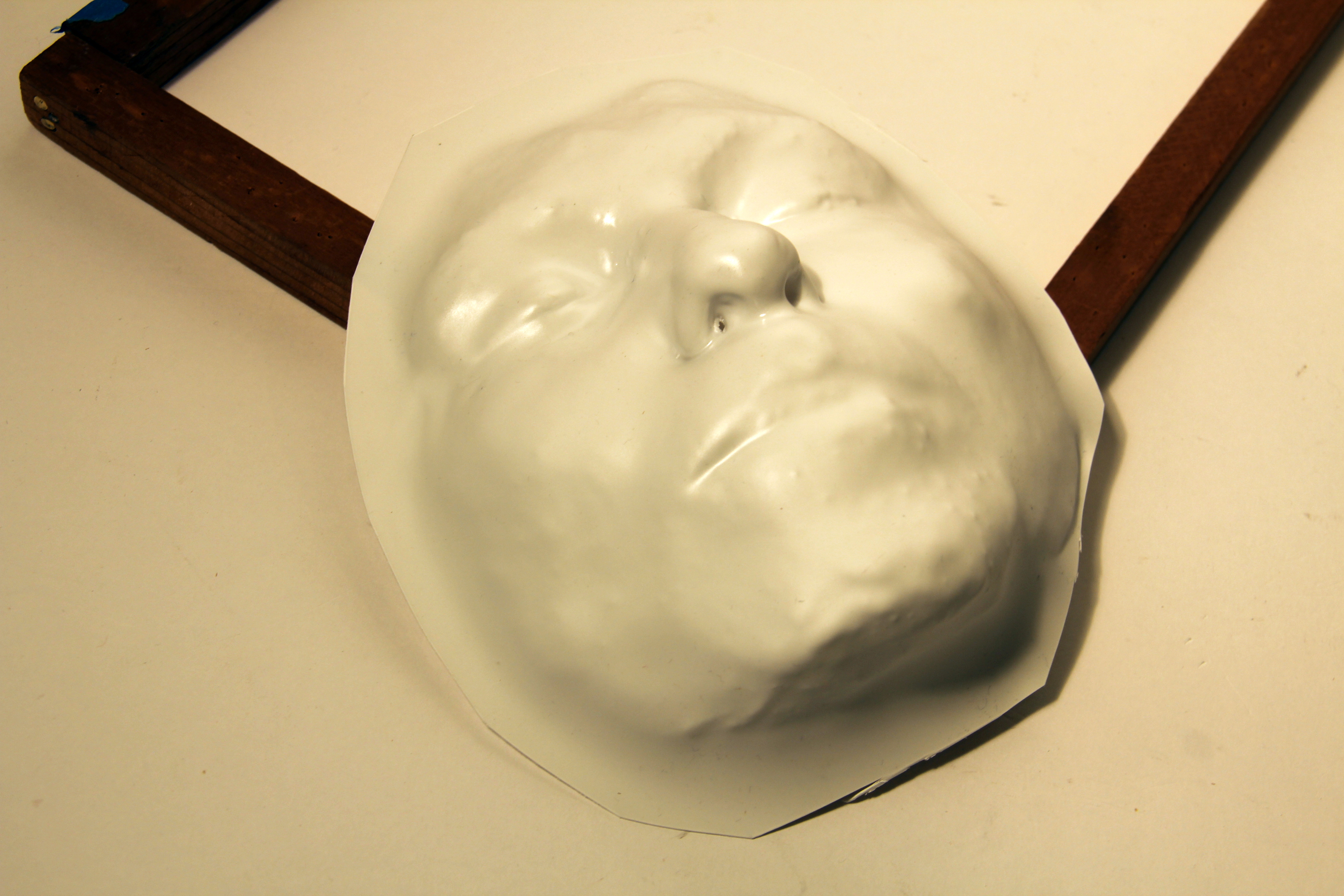 Picture of Vacuum Form Face