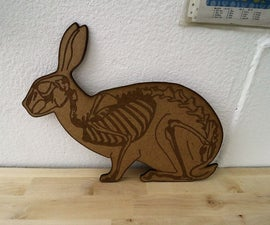 THE SCARY SKELETON BUNNY