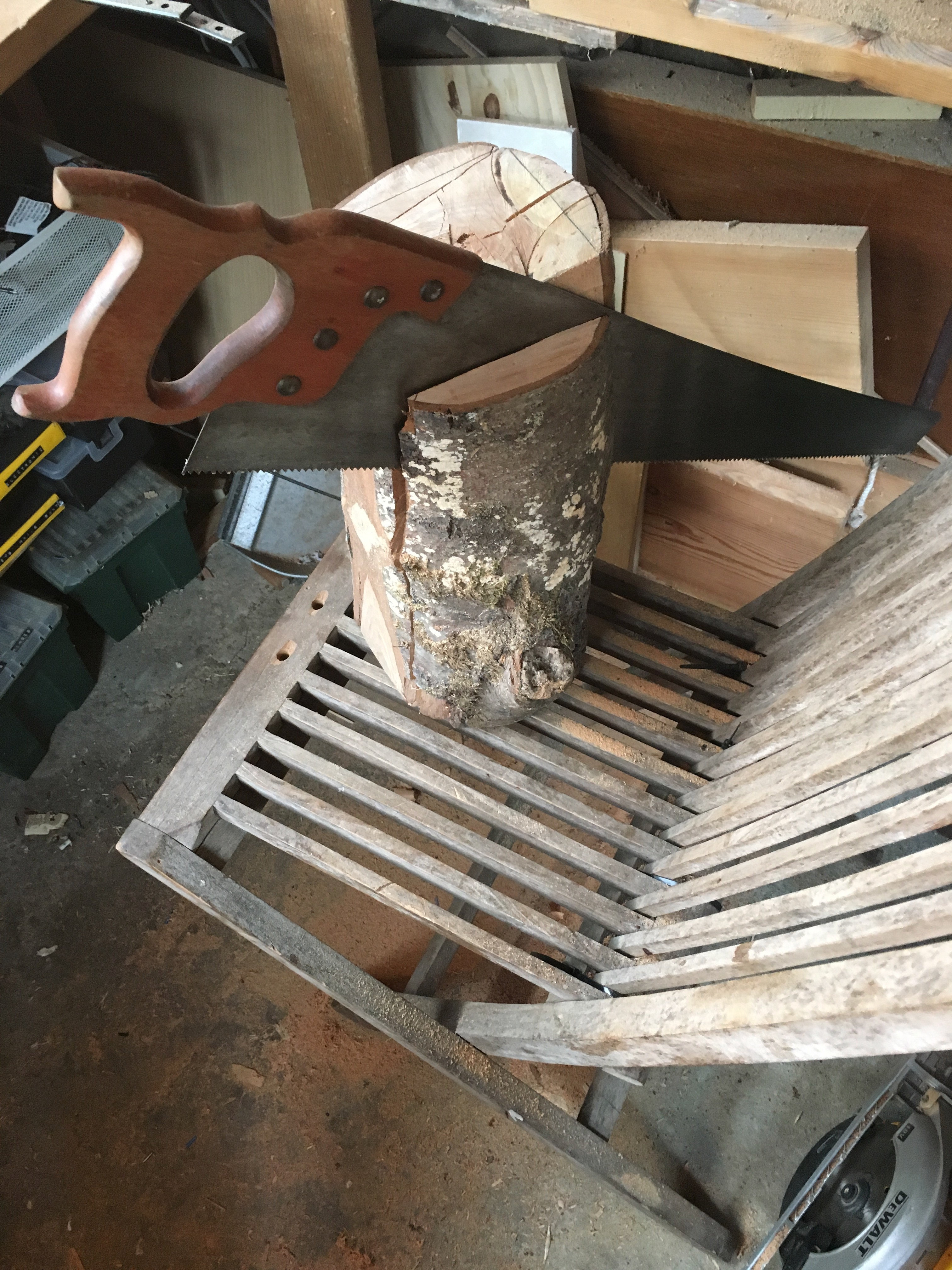 Picture of First Cuts: Squaring the Sides