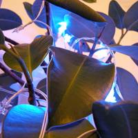 Radiation Triggered LED Lighting
